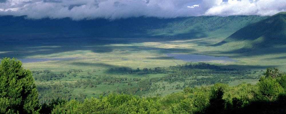 ngorongoro-highlands-7