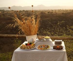 Accommodation Tanzania Safaris (23)