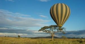 Accommodation Tanzania Safaris (31)