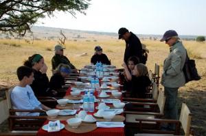 Accommodation Tanzania Safaris (32)